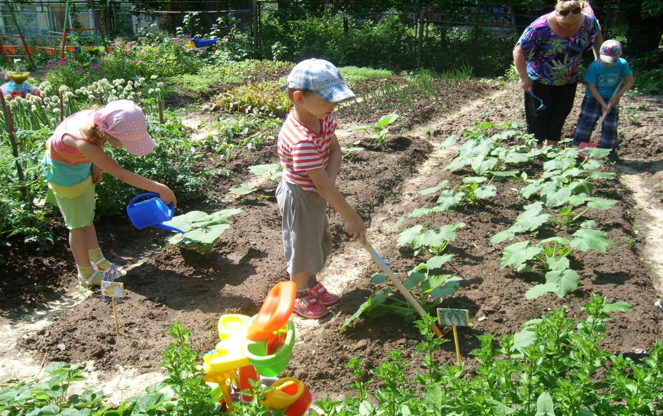 Для детей старшей и подготовительной к школе групп лучше делать огород совместно, а для младших отдельно.